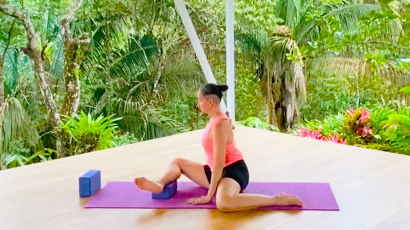 Hip, Lower Back, Groin exercises