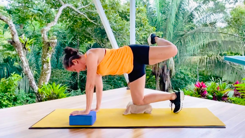 internal and external hip rotation exercises